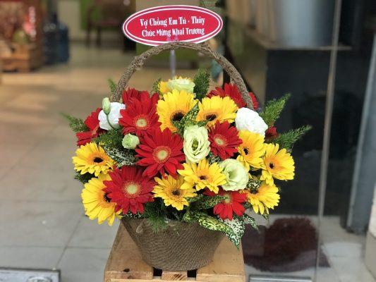Kết quả hình ảnh cho hoa chúc mừng khai trương hoa đồng tiền