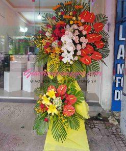 Hoa chúc mừng giao hoa toàn quốc A11