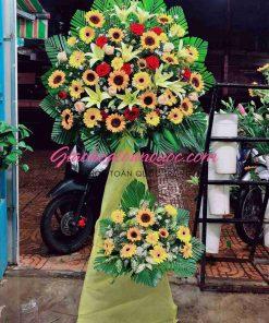 Hoa chúc mừng giao hoa toàn quốc A13
