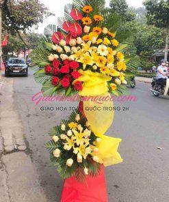 Hoa chúc mừng giao hoa toàn quốc A18