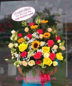 Giỏ hoa tươi giao hoa toàn quốc D26